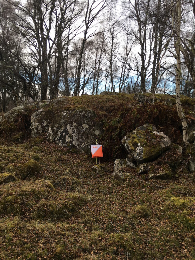Mullochard Crag Foot